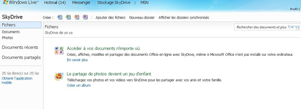 Interface Skydrive